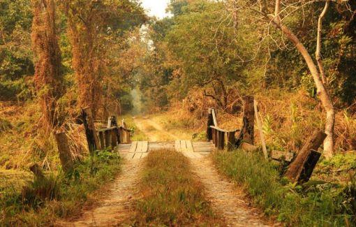 ChitwanJeepSafari15