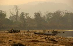 ChitwanJeepSafari28
