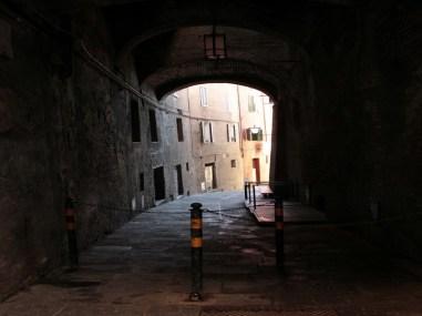 Siena11