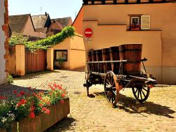 eguisheim83