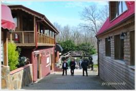 Green House Park Hotel giriş
