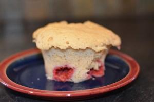 gf microwave muffin
