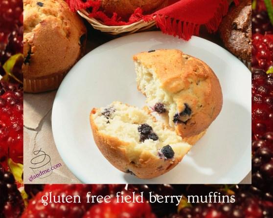 field berry muffins gluten free by gfandme.com