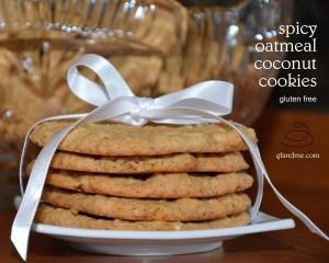 gluten free oatmeal coconut cookies. gfandme.com