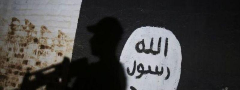 The enduring appeal of the violent jihad