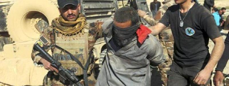 Two Islamic State terrorists arrested and two rest houses destroyed in Salahuddin