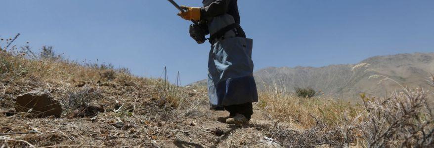 Mine left by the Islamic State terrorists kills seven Syrian children