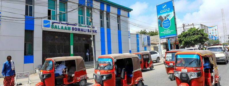 Al Shabaab terrorist financing at Salaam Somali Bank of Hormuud Telecom Group