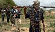 At least ten people dead including four security personnel in Nigeria's Borno state