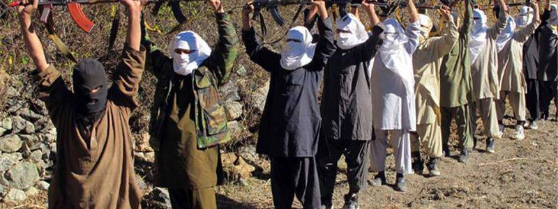 Pakistan supports Taliban and Al-Qaeda terrorist groups
