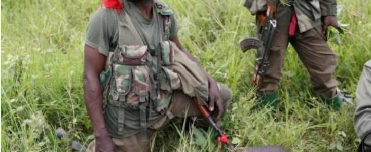 Is Islamic State really operating in eastern Democratic Republic of Congo?