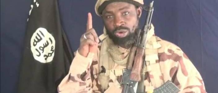 Boko Haram leader Shekau killed on direct orders of Islamic State