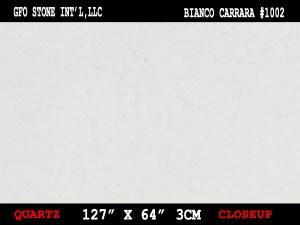BIANCO CARRARA #1002-CLOSEUP