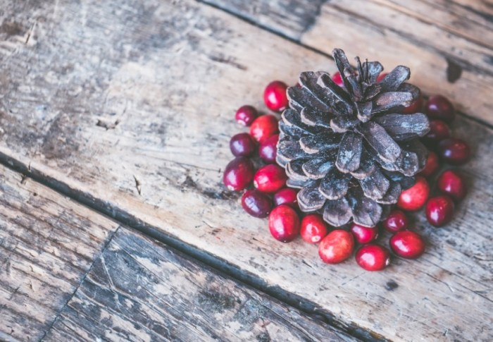 Recept: Cranberry muffins