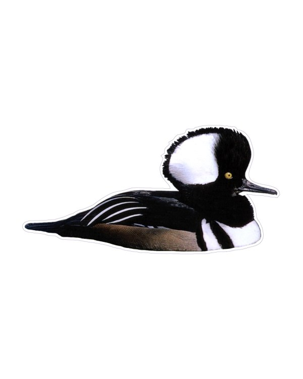"Merganser Magnet or Sticker for Indoor or Outdoor Use 7.5"" x 4"""