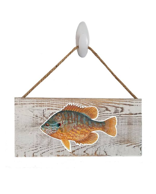 "Pumpkinseed White Wood Sign. Size: 12"" W x 5.5"" H - With Rope 11"" H -.30 Thick"
