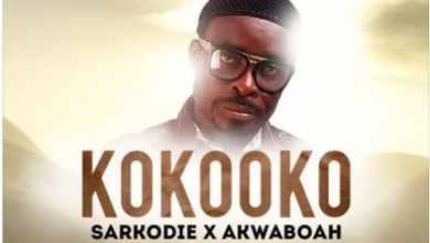 Photo of Sarkodie x Akwaboah – Kokooko (Dasebre Dwamena Tribute) (Audio Slide)