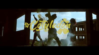 Photo of Itz Tiffany – Cotyledon (Official Video)