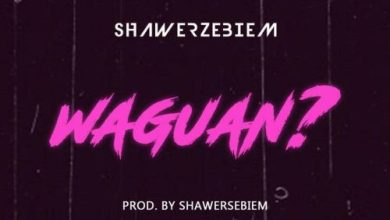 Photo of Download : Shawerz Ebiem – Waguan (Prod by Shawerz ebiem)