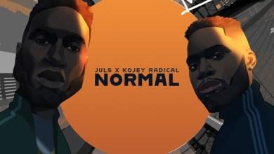 Photo of Video : Juls – Normal Ft Kojey Radical