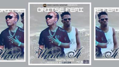Photo of Download : Oritse Femi Ft Shatta Wale x Cynthia Morgan – Want It