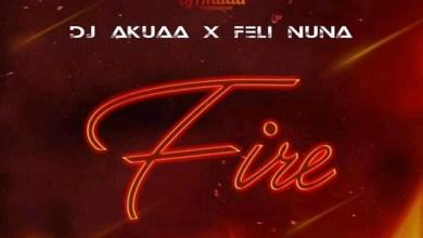 Photo of Download : Dj Akuaa x Feli Nuna – Fire (Prod. by Apya)