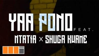 Photo of Download : Yaa Pono Ft Ntatia x Shuga Kwame – Low High