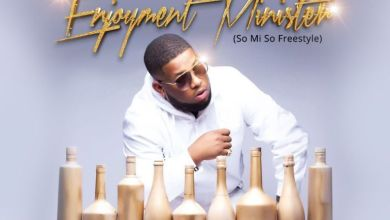 Photo of Download : D-Black – Enjoyment Minister (So Mi So Freestyle)