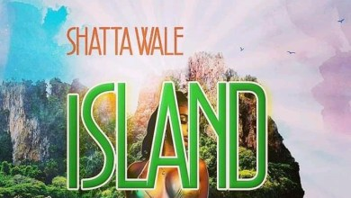 Photo of Download : Shatta Wale – Island (Prod. YGF Records)