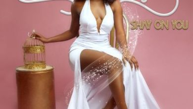 Photo of Download : Wendy Shay – Shay On You (Full Album)