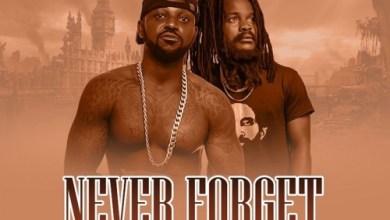 Photo of Download : Yaa Pono Ft Ras Kuuku – Never Forget