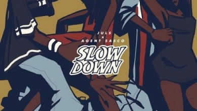 Photo of Download : Juls Ft Agent Sasco – Slow Down