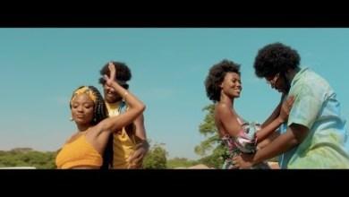 Photo of Efya Ft Medikal – Ankwadobi (Official Video)