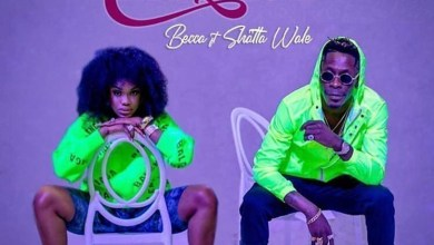 Photo of Download : Becca Ft Shatta Wale – Driving License