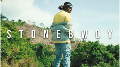 Photo of Stonebwoy – Tuff Seed (Official Video)