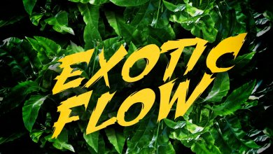 Photo of Download : Omar Sterling – Exotic Flow (Prod. By Killmatic)