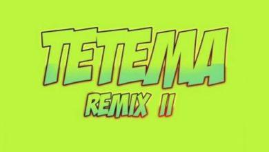 Rayvanny Ft Patoranking x Zlatan x Diamond Platnumz – Tetema (Remix) II