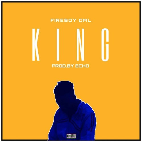 Instrumental  Fireboy DML - King