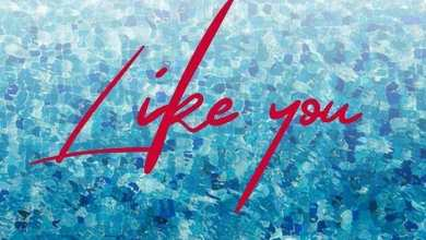Photo of Download : May D – Like You