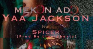 Yaa Jackson Ft Spicer – Mekon Ado (Prod By Liquid Beatz)