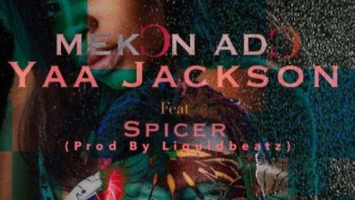 Photo of Yaa Jackson Ft Spicer – Mekon Ado (Prod By Liquid Beatz)