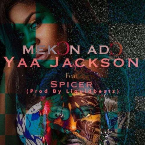 Yaa Jackson Ft Spicer – Mekon Ado (Prod By Liquid Beatz)