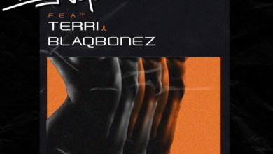 Photo of DJ Voyst Ft Terri x Blaqbonez – Hold You Down