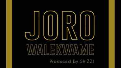 Photo of Wale Kwame – Joro (Prod By Shizzi)