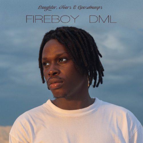 Fireboy DML – Like I Do (Instrumental)