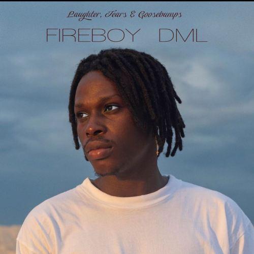 Fireboy DML – Need You (Prod By Pheelz)