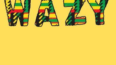 Photo of Hameed Idowu Ft Mr Eazi – Wazy (Remix)