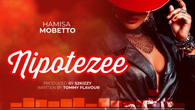 Photo of Lyrics : Hamisa Mobetto – Nipotezee