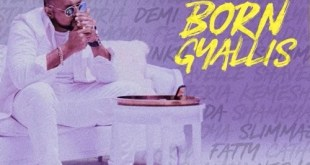 Sean Paul – Born Gyallis (AirCraft Riddim)