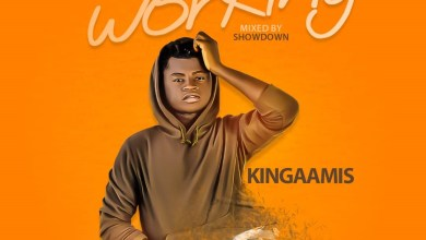 Photo of Kingaamis – Working (Mixed By Showdown)